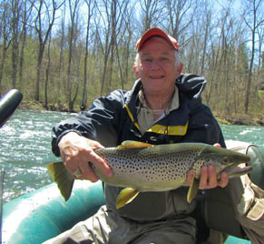 Stonesthrow on jackson river tailwater fly fishing lodge for Trout fishing va